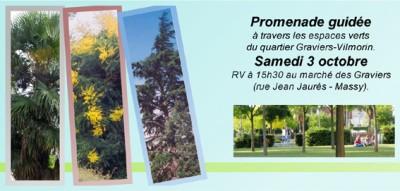 arbres 3.jpg
